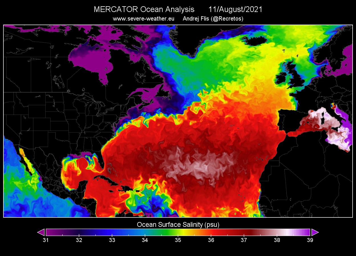 gulf-stream-collapse-atlantic-ocean-surface-salinity