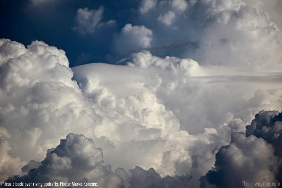 Pileus cloud LW 3