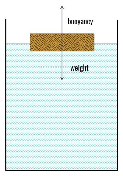 Buoyancy-1a-LW