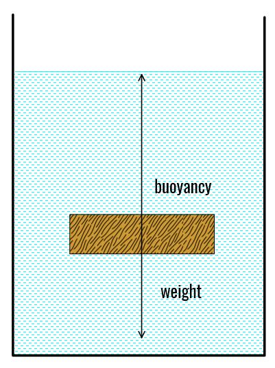 Buoyancy 2 LW