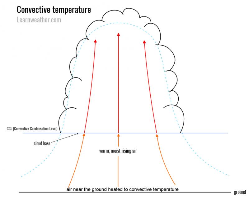Convective temperature 1 LW