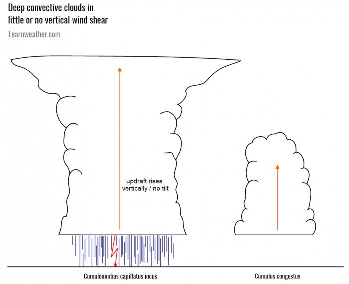 Deep convection no vertical shear LW 2