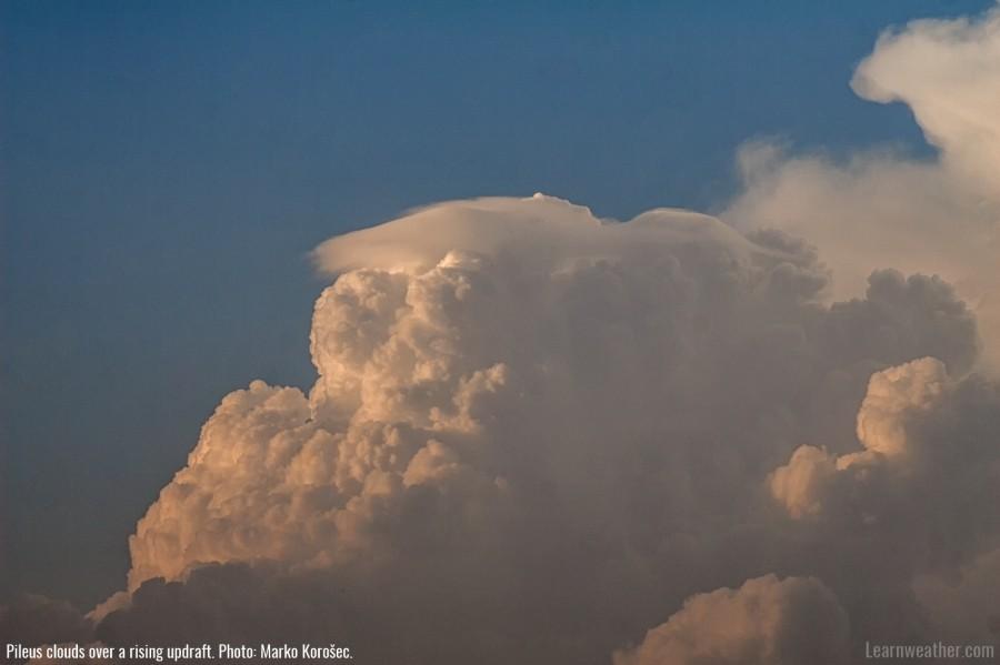 Pileus cloud LW 2