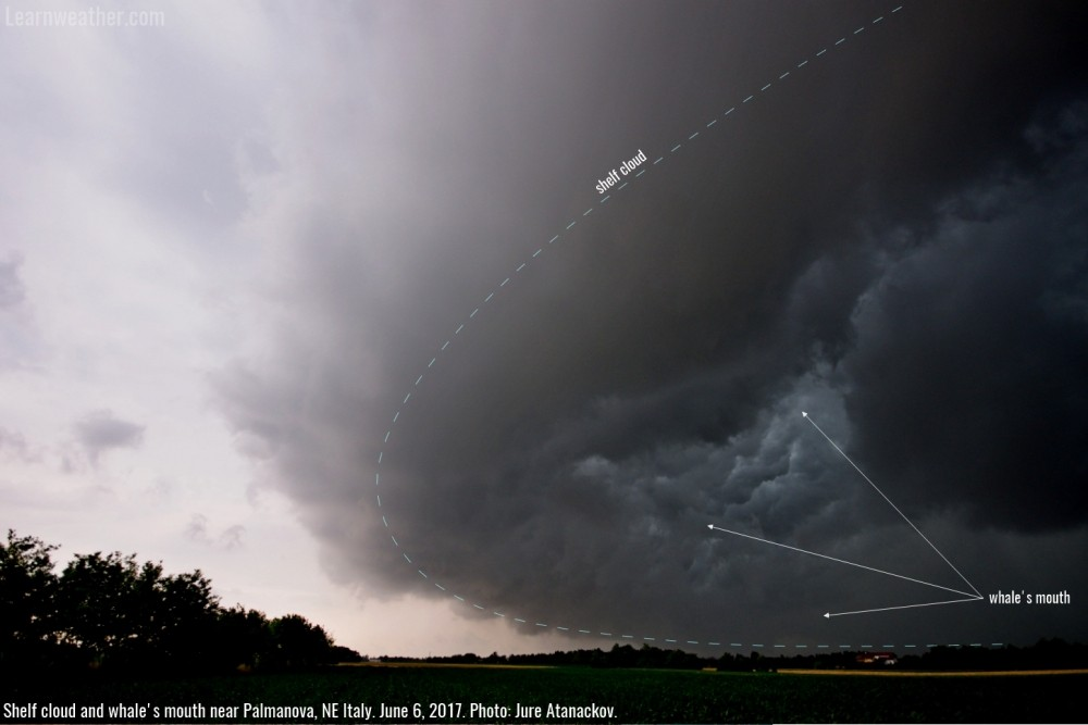Shelf_cloud_whales_mouth_Palmanova_1a_SWE_Atanackov_anno